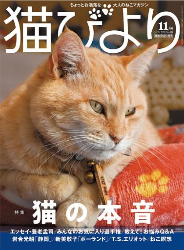 猫びより2020年11月号 Vol.114