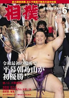 相撲 2019年6月 夏場所総決算号