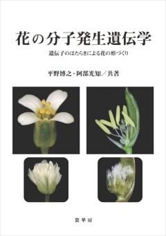 花の分子発生遺伝学遺伝子のはたらきによる花の形づくり