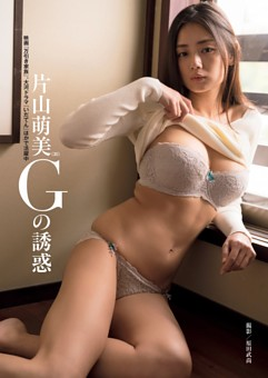片山萌美 Gの誘惑