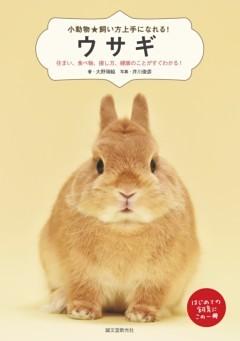 ウサギ住まい、食べ物、接し方、病気のことがすぐわかる!