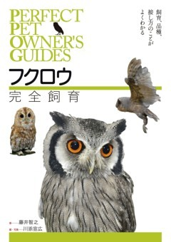 フクロウ完全飼育飼育、品種、接し方のことがよくわかる