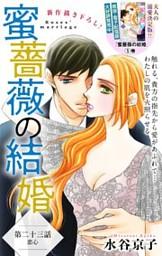 Love Silky 蜜薔薇の結婚 story23