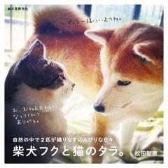 柴犬フクと猫のタラ。自然の中で2匹が織りなす のんびりな日々