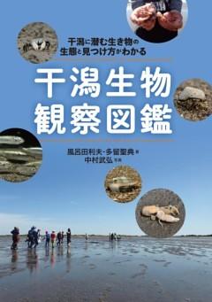 干潟生物観察図鑑干潟に潜む生き物の生態と見つけ方がわかる