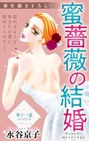 Love Silky 蜜薔薇の結婚 story11