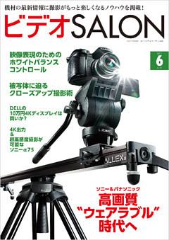 ビデオ SALON (サロン) 2014年 06月号