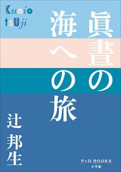 P+D BOOKS 眞晝の海への旅