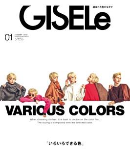 GISELe 2020年1月号